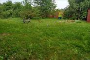 Работа в саду, огороде, на участке.